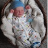 Realistic 17.5'' Camille Reborn Baby Doll