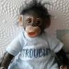 Lifelike Baby Monkey Reborn Doll Named Philipy