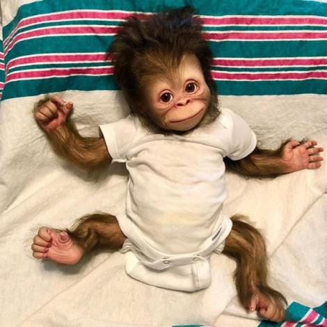 Truly Aref  Baby Monkey Reborn Doll